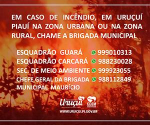 Prefeitura Municipal de Uruçuí.