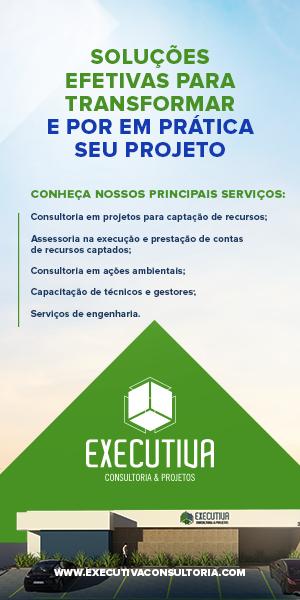 Executiva Consultoria e projetos