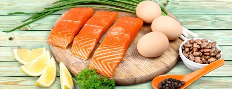 Dieta Low Carb e sua aplicação no emagrecimento e diabetes Melittus tipo I e II
