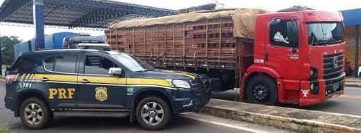 Caminhão é flagrado com 49 toneladas de madeira ilegal na BR-316