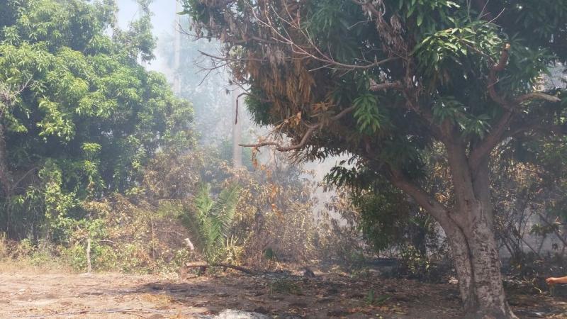 Incêndio de grande proporção destrói vegetação no município de Manoel Emídio