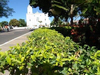 Prefeita Ceiça Dias decreta ponto facultativo nas repartições municipais de Valença do Piauí