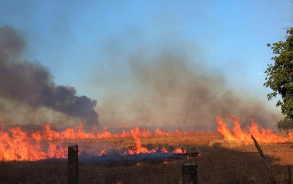Incêndio assusta moradores da zona rural de Água Branca