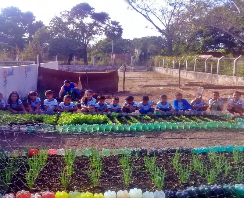 Estudantes da UFPI conhecem projeto de horta orgânica da Creche Tia Zezita Barbosa