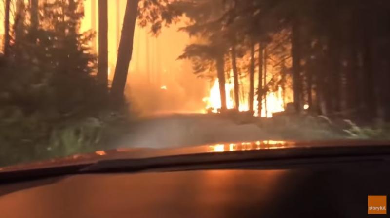 Pai e filho atravessam de carro pela floresta no momento do incêndio