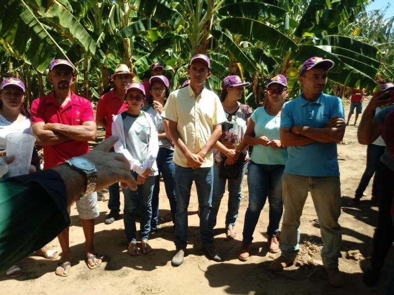 Sindicato dos Trabalhadores de Várzea Grande Realiza I dia de Campo Cultura de Banana