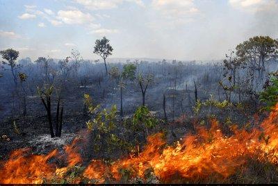 Piauí registra alto índice de incêndio com 2.991 focos