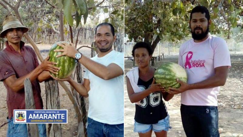 Prefeitura Municipal de Amarante realizando entregas de melancias; veja