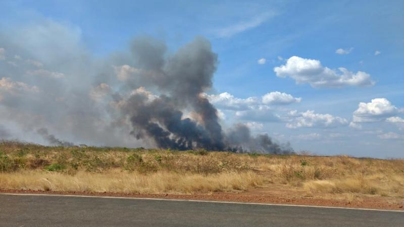 Incêndio atinge área de vegetação em Tanque do Piauí
