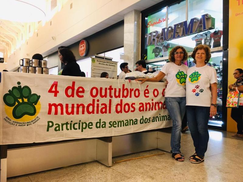 APIPA realiza evento para receber doações em Teresina