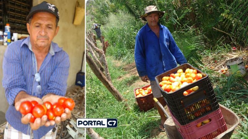 Amarante: Breguinha com grande projeto Agricultura familiar; imagens em HD