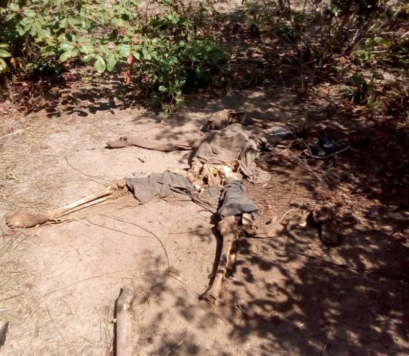 Carvoeiros encontram ossada humana em matagal em Batalha