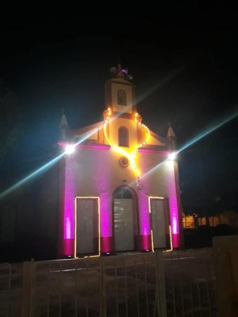 Demerval Lobão 'se veste' de rosa para comemorar atividades