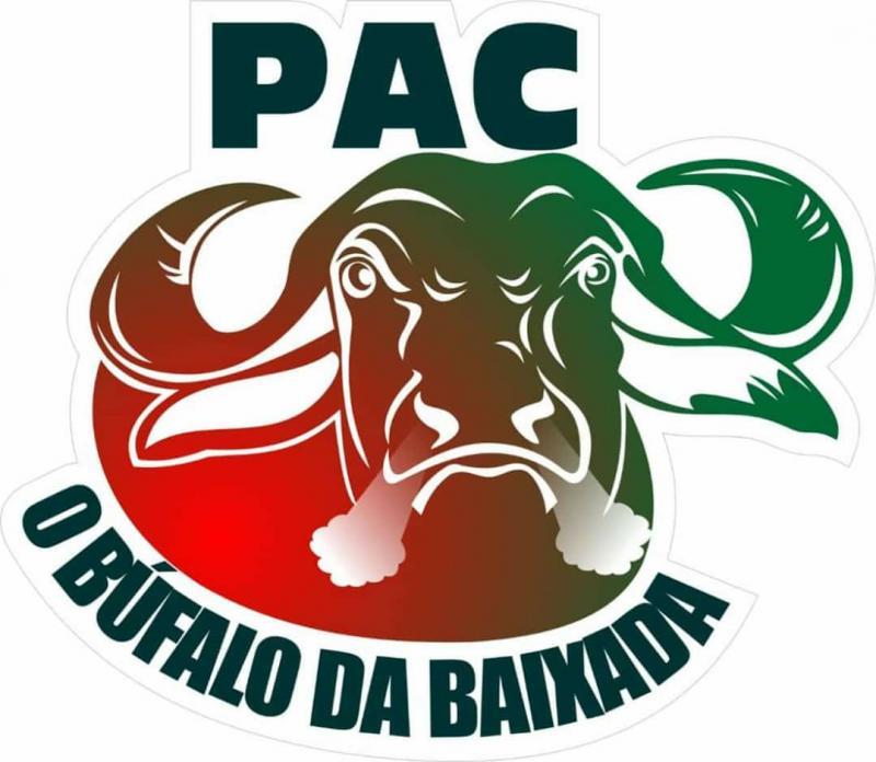 Pinheiro é campeão invícto da Série B do Maranhense 2018