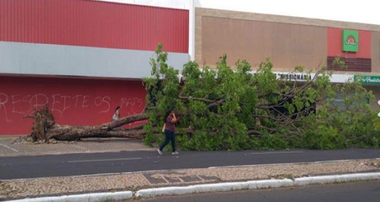 Ventos de até 62 km atingem Teresina e causam estragos em várias regiões