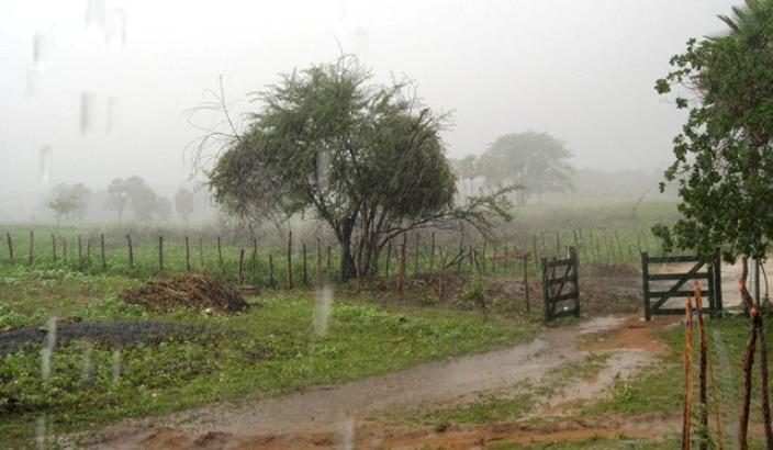 Chuvas aliviam o sofrimento em municípios do Extremo Sul do Piauí