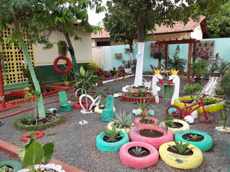 Alunos da Escola Hugo Napoleão constroem jardim sustentável