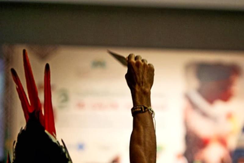 Piauí participa de Conferência Nacional de Saúde Indígena