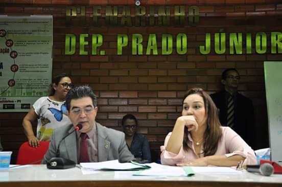 Limma presidiu audiência pública sobre a situação dos servidores da Cepisa