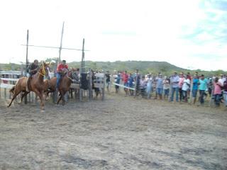 Corrida de cavalos no prado bastante aguardado para o dia 19