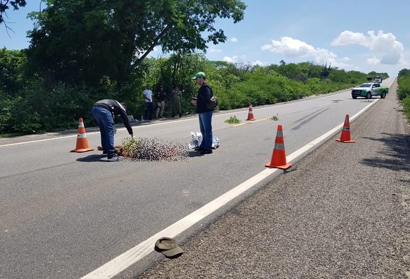 Homem morre após ser atropelado na BR-407