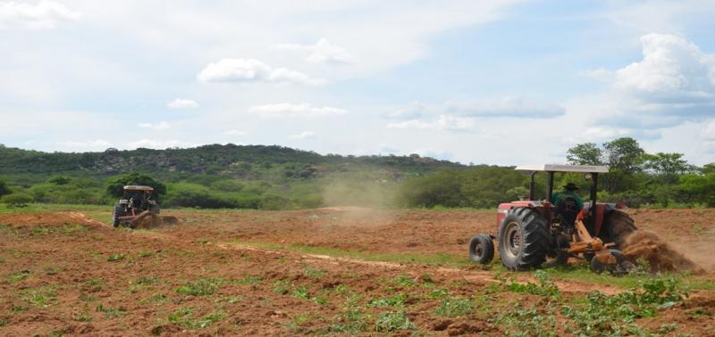 Aração de terra incentiva a agricultura familiar em Caldeirão Grande
