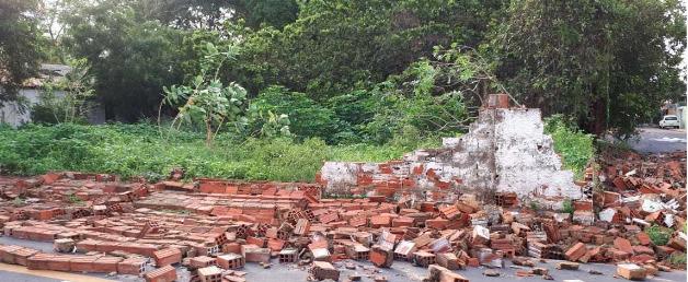 Árvores e muro de creche caem após forte chuva em Teresina