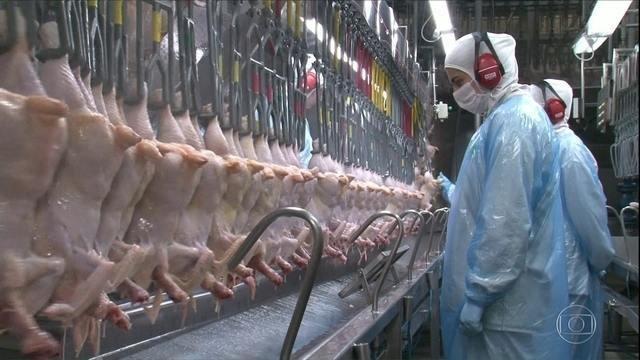 Arábia Saudita barra compra de frango de 5 frigoríficos brasileiros