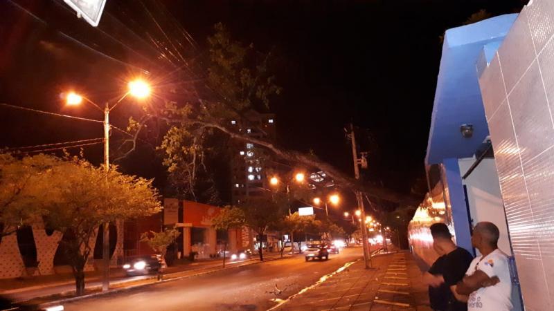 Foto: Divulgação/Cepisa