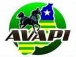 Edital de Convocação AVAPI