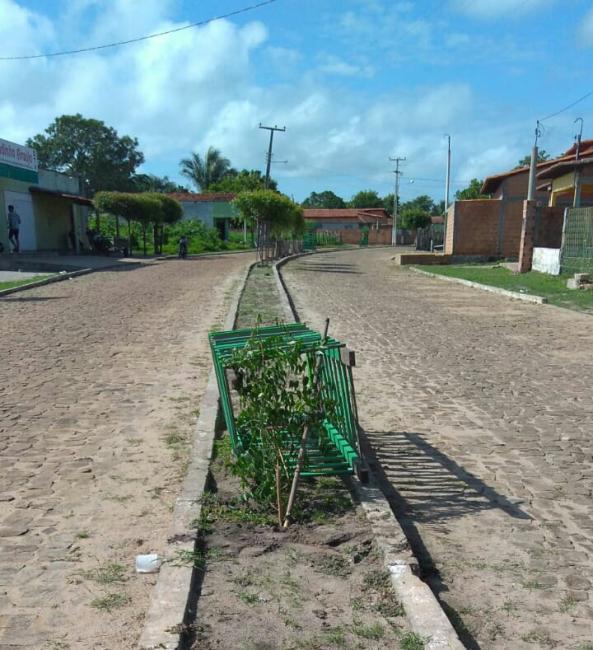 Vândalos destruíram canteiros na avenida Pedro Lopes em São João do Arraial