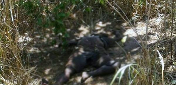Corpo de homem é encontrado em estado de decomposição no Piauí