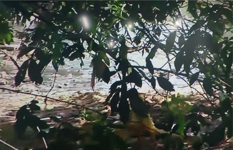 Corpo de homem é encontrado boiando no rio Parnaíba