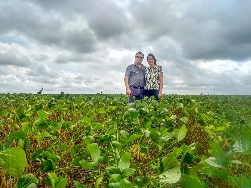 Será que vale comprar e arrendar terras para produzir soja no Piauí?