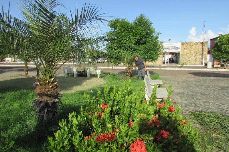 Vereador Raimundo Coimbra coloca mão na massa em serviço de limpeza