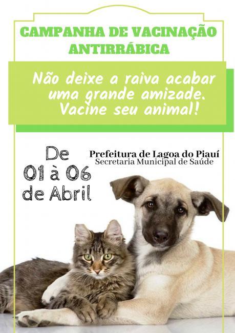 Lagoa do Piauí realiza campanha de vacinação antirrábica