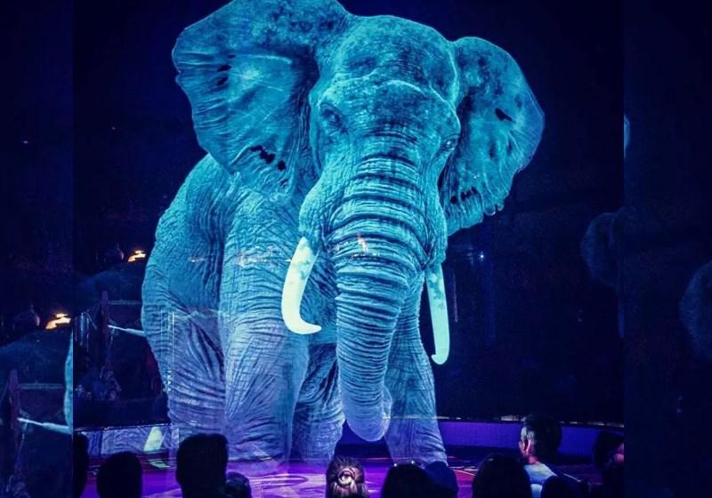 Animais são substituídos por hologramas em circo alemão