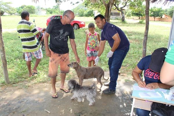 Vacinação antirrábica em cães e gatos na Comunidade Aliança do Gurgueia