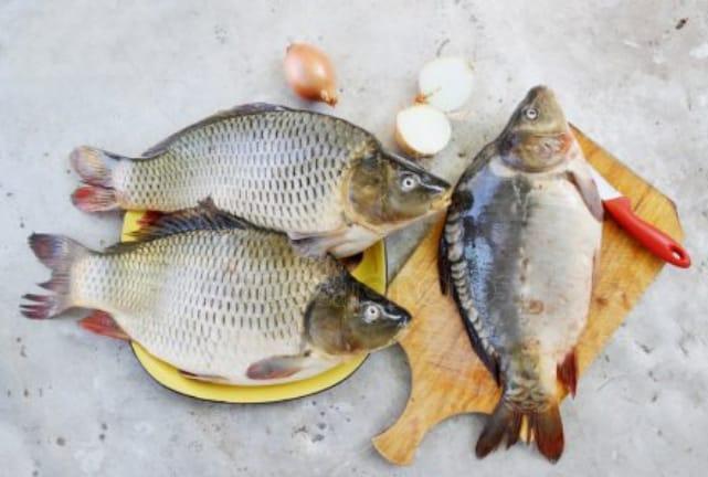 Prefeitura de Olho D'água realiza entrega de peixes para Samana Santa