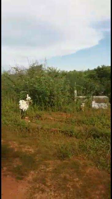 Cemitério Municipal de Passagem Franca do Piauí está abandonado