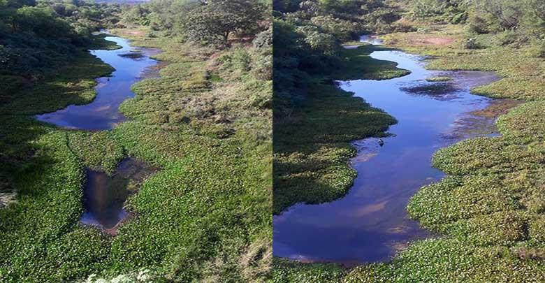 Rio corre risco de secar devido a baixa vazão de barragem no PI