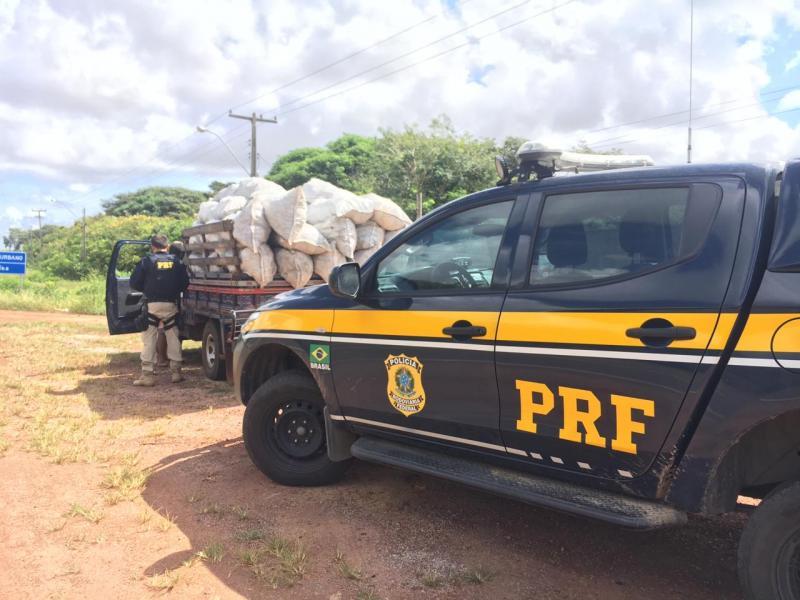 PRF apreende carvão vegetal sem licença em Parnaíba