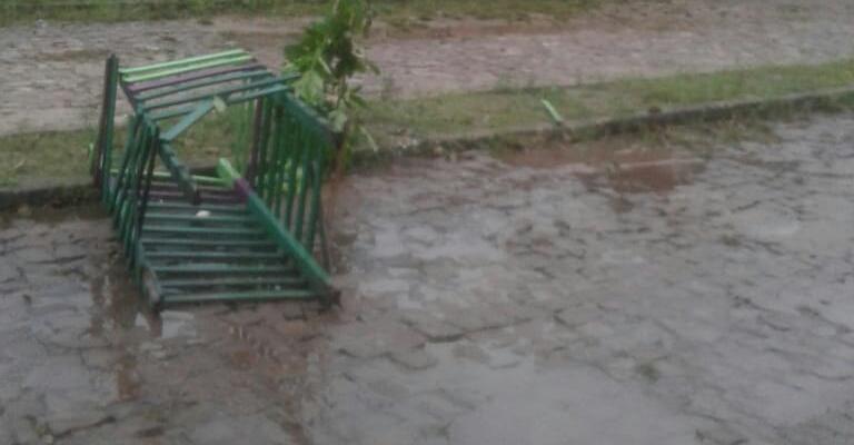 Vândalos destruíram outro canteiro na avenida Pedro Lopes