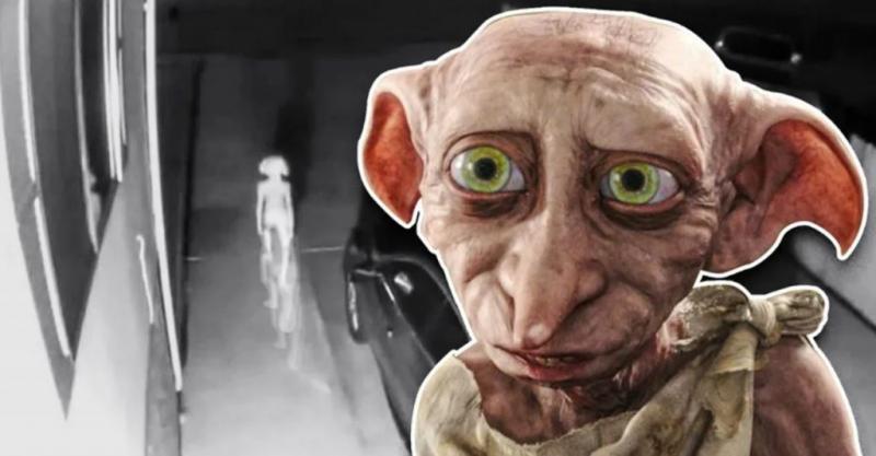 Dobby, elfo de Harry Potter, é visto em vídeo de câmera de segurança