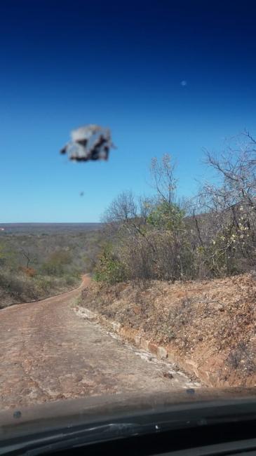 Objeto não identificado é visto flutuando na Zona Rural de Simplício Mendes