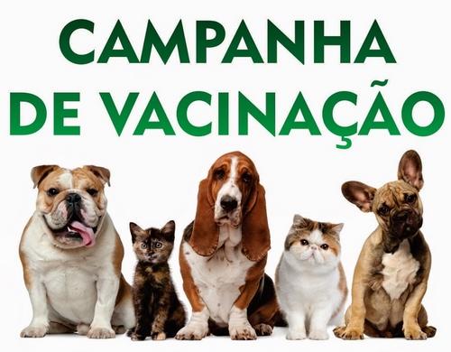 Secretaria Municipal de Saúde realizará Dia D de Vacinação Antirrábica neste Sábado