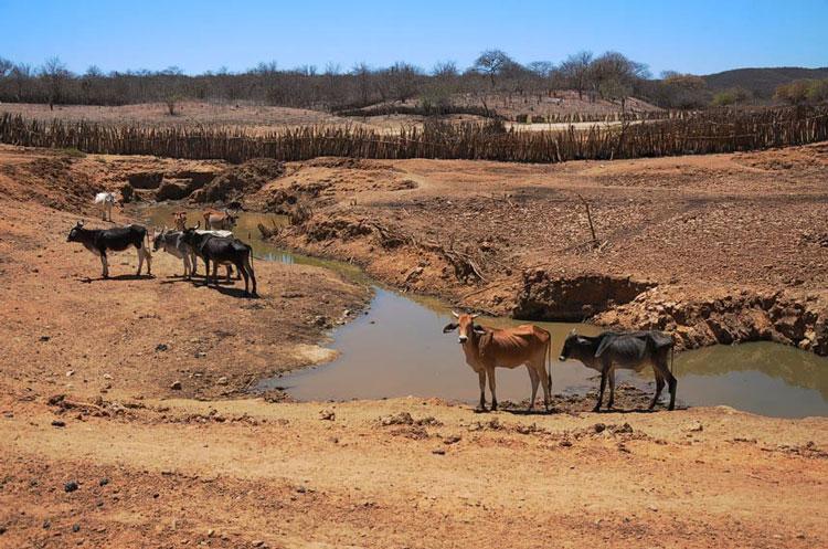 Municípios do Piauí receberão mais de R$ 50 milhões em recursos