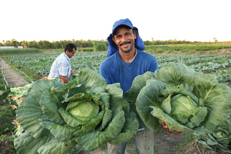 Avanços na agricultura familiar geram alegria e renda ao trabalhador rural