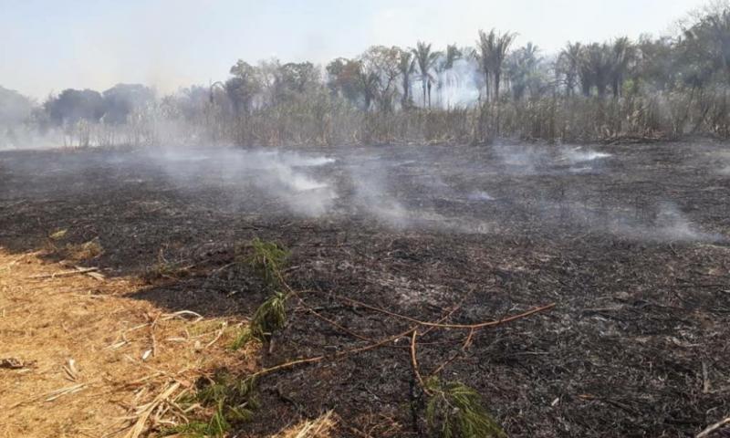 Polícia de Amarante indicia suspeitos de incêndio da Cachaça Lira