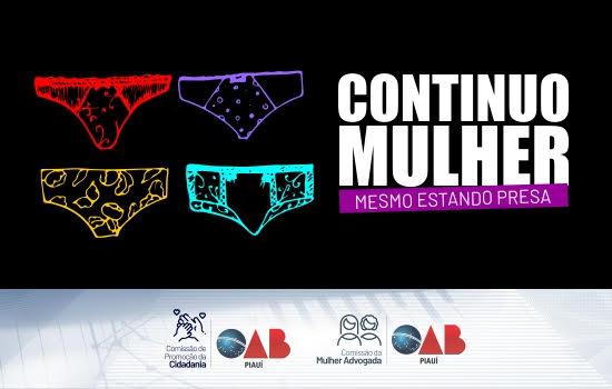 A OAB Piauí realiza campanha em prol das detentas nas penitenciárias